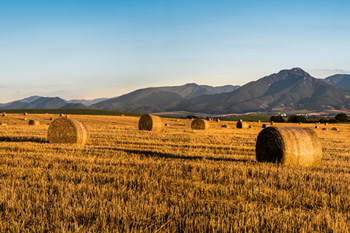 hay bales with mountain range in background